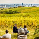 Vienna Woods Vineyard Heuriger with Scenic View (Reclaiming Heimat) #Kahlenberg