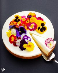 Blooming Jewish Cheesecake with Tablets of the Law Crust: Freud, Moses & a Mel Brooks Joke (Recipe) #EdibleFlowers #Shavuot #Topfentorte